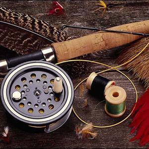 Охотничьи и рыболовные магазины Новодвинска
