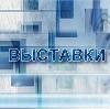 Выставки в Новодвинске