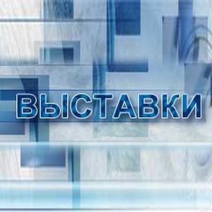 Выставки Новодвинска